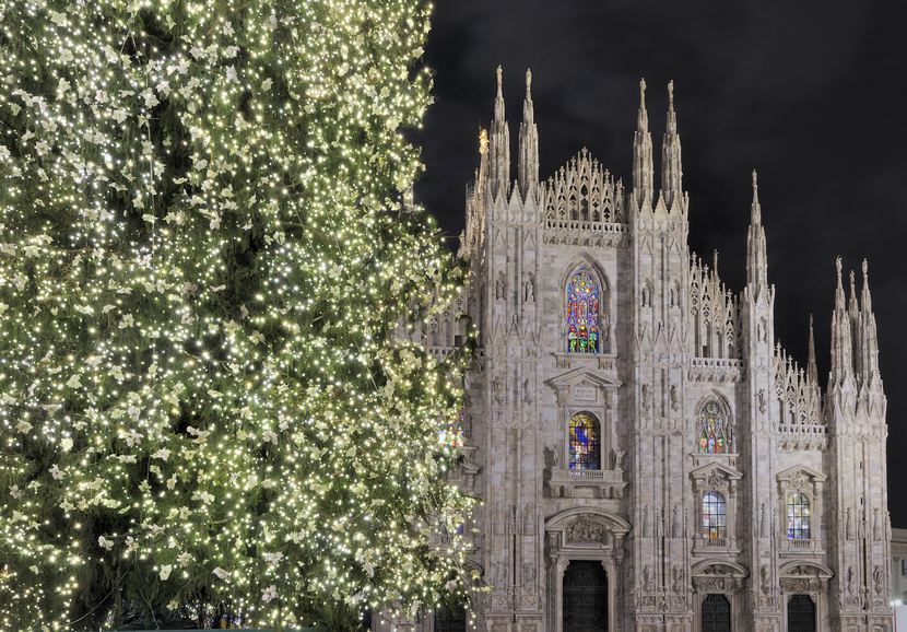 Christmas Tree and Cathedral, Milan